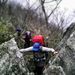 Best Asheville Backpacking Trips