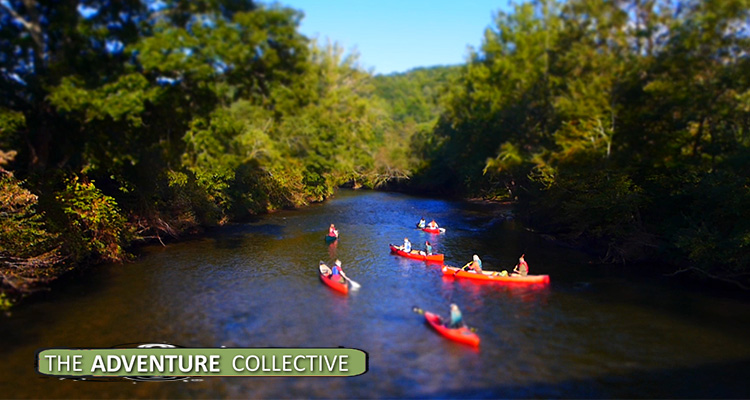 Best Brevard River Trips + Places To Paddle