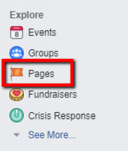Facebook Pages section