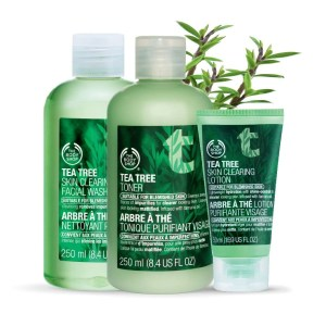 body shop tee tree oil trio