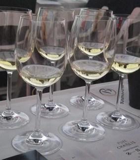chablis wines at tasting