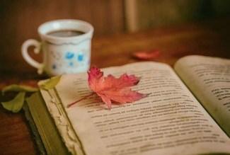 book with mug and autumn leaf