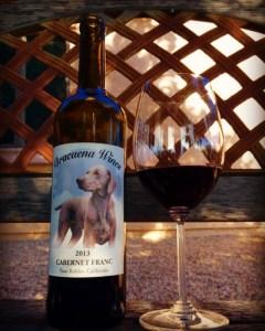 2013 paso robles wine