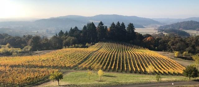 Video AdVINEture: Oregon's Willamette Valley