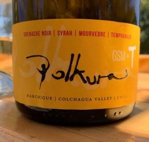 colchagua chile wine