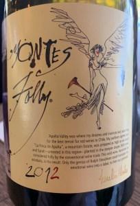 Apalta Colchagua valley chile wine