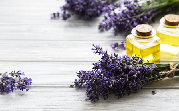 aromatherapy in delhi india