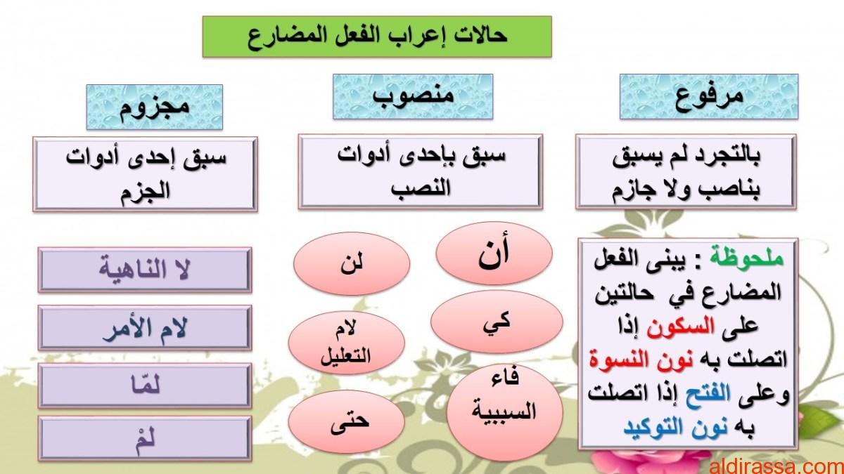اجابة درس جزم الفعل المضارع لمادة اللغة العربية الصف السابع
