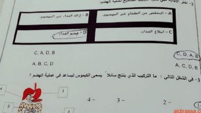امتحان نهاية الفصل الدراسي الثالث لعام 2018 علوم الصف الثامن