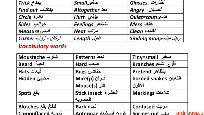 مفردات الوحدة الرابعة لغة إنجليزية الفصل الاول الصف الرابع