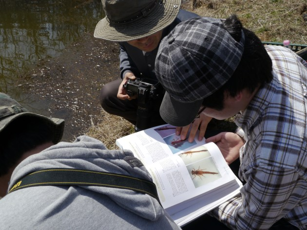 Citizen ecologists monitoring aquatic insects in small irrigation ponds in the CCZ, April 2012. Photo by Eleana Kim.