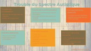 Trouble du Spectre Autistique 2-2