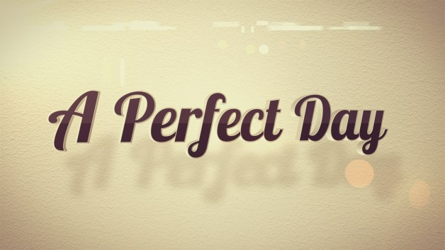 Image result for perfect day