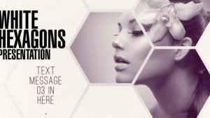 Clean White Hexagon Presentation