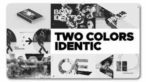 Two Colors Identic