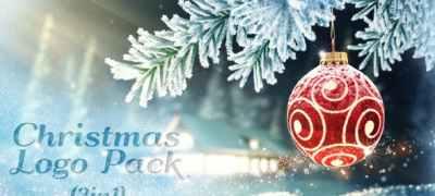 Christmas SnowFlake Logo