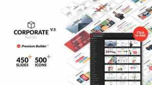 Corporate Bundle & Infographics