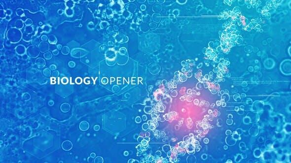 VIDEOHIVE BIOLOGY OPENER