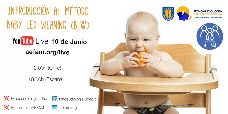 Directo 10 de Junio – Introducción al método Baby-Led Weaning