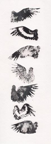 crow wings #1