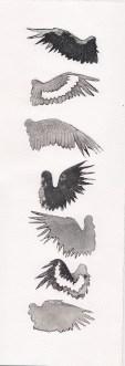 crow wings #2