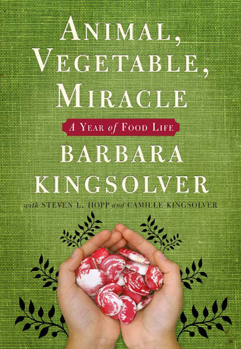 Kingsolver's book requires an open mind, patience, and at times, tolerance to dullness.