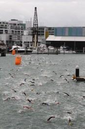 Harbour Crossing, Auckland, New Zealand 2012