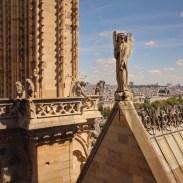 notre-dame-paris-roof-11