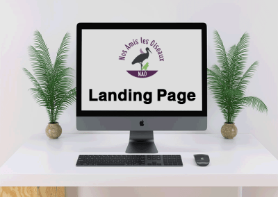 Landing Page Website NAO