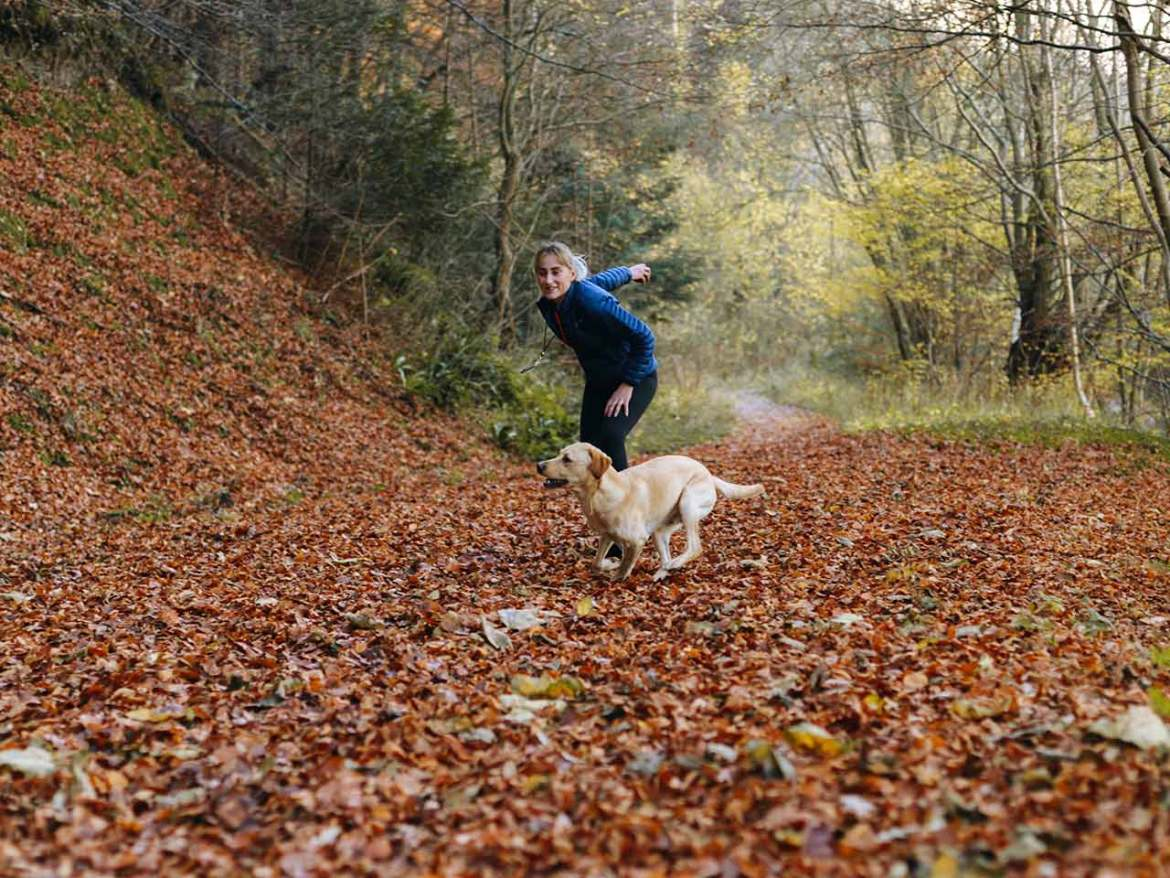 A woman training a dog in the woods