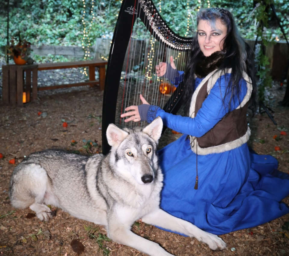 Aelvenharp and the Wolf