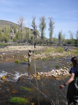 Cindy and Suzanne surveying across the Provo River, Utah.