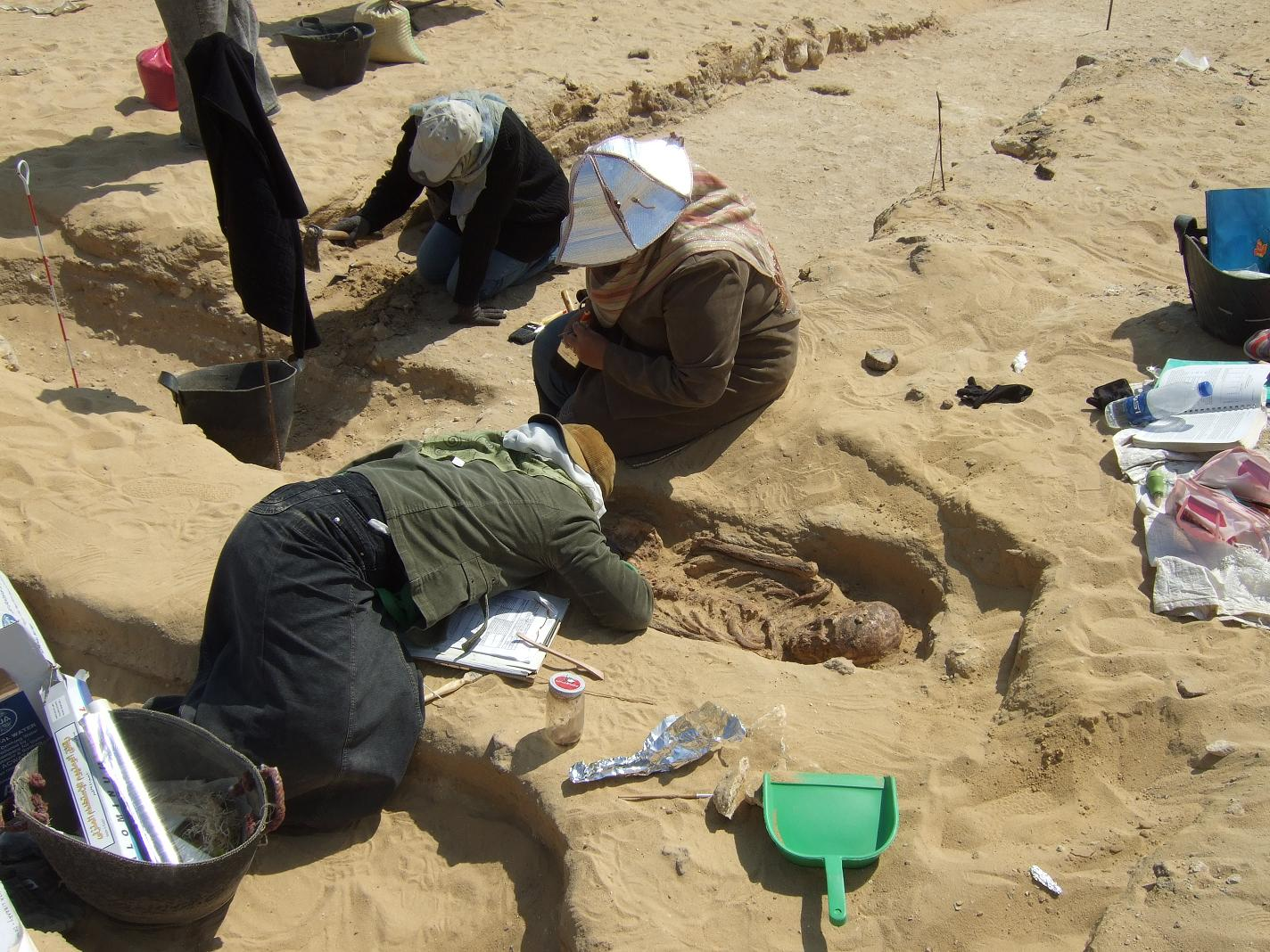 AERA/ARCE field school students with a Late Period burial.