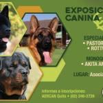 EXPOSICIONES ESPECIALIZADAS Y MONOGRAFICA DEL 6 Y 7 DE MAYO DEL 2017