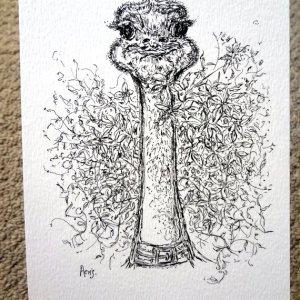 Young Ostrich Art