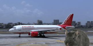 Índia Aviação Companhias Aéreas