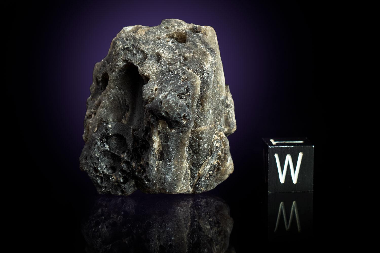 Darwin Glass 26.3 Grams