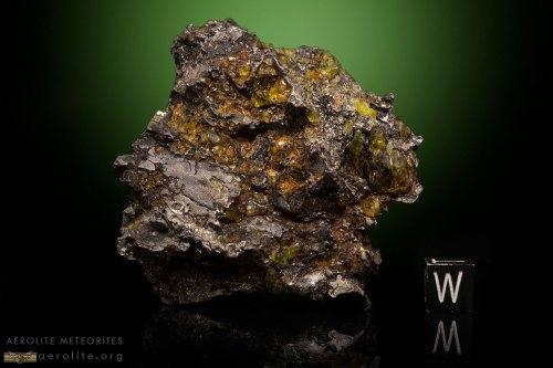 admire pallasite nugget 127 grams