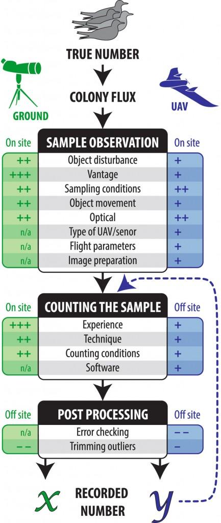 L'ampleur estimée de la variance pour chaque élément pour chaque type de comptage