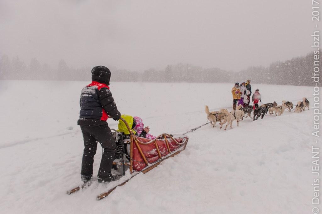Neige qui tombe et traineaux à chiens
