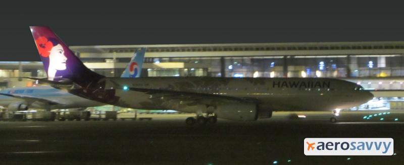 Hawaiian Airlines Logo Light - Savvy Passenger Guide to Airplane Lights- AeroSavvy