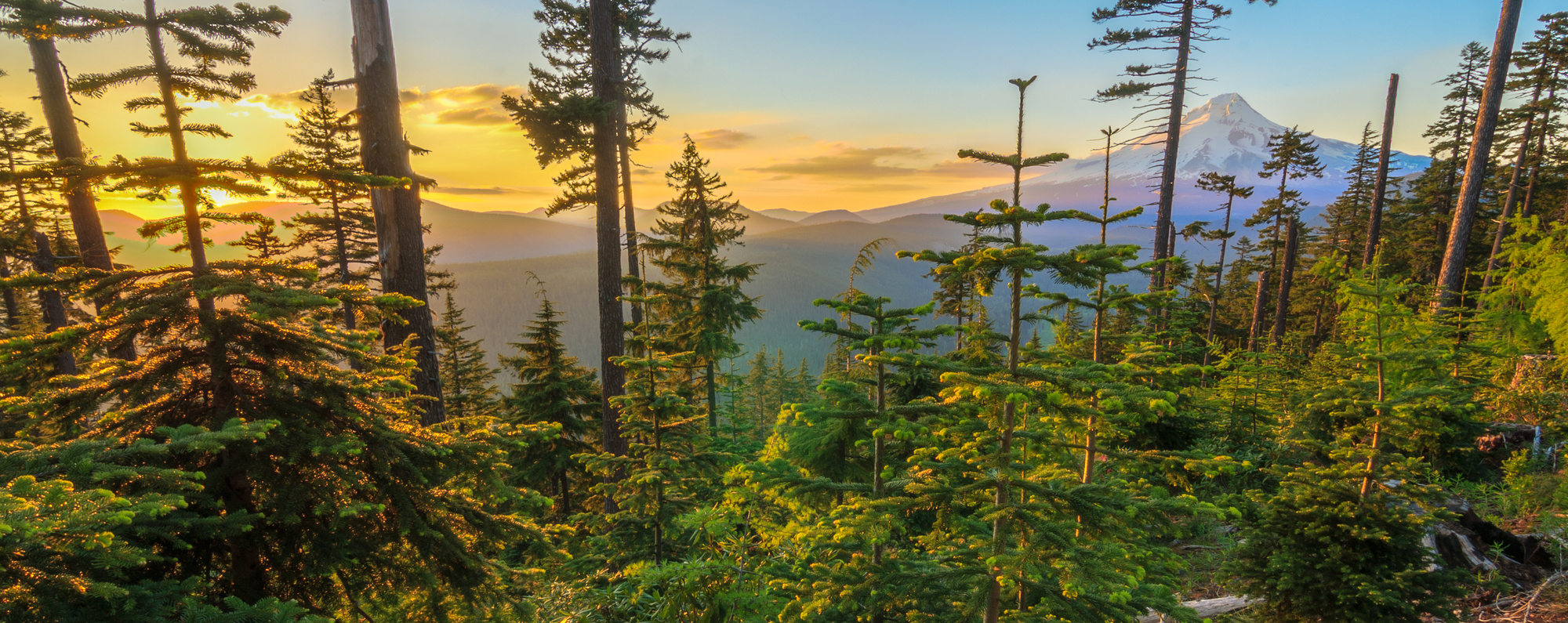 Camping spots in Oregon