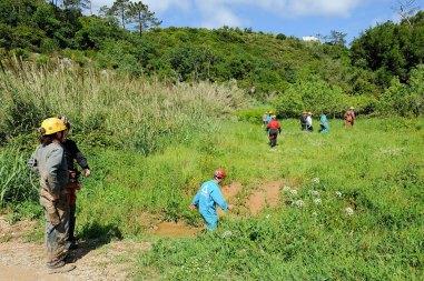 web-r-noticia-2010-05-09-Festa-da-Juventude_RMF1242_RMF0734
