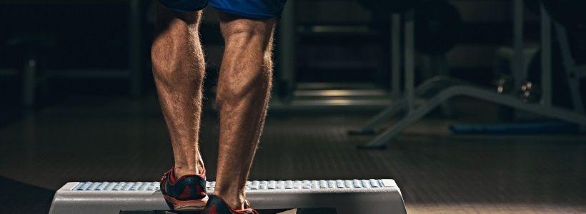 Wadentraining für optimalen Muskelaufbau | Übungen, Frequenz & Periodisierung