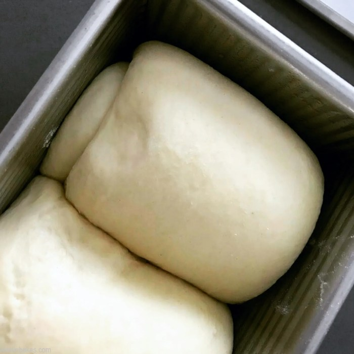 Poke test on Japanese Milk Bread dough