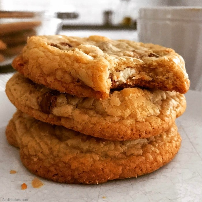 Three Soft & Chewy Chocolate Chip Cookies far