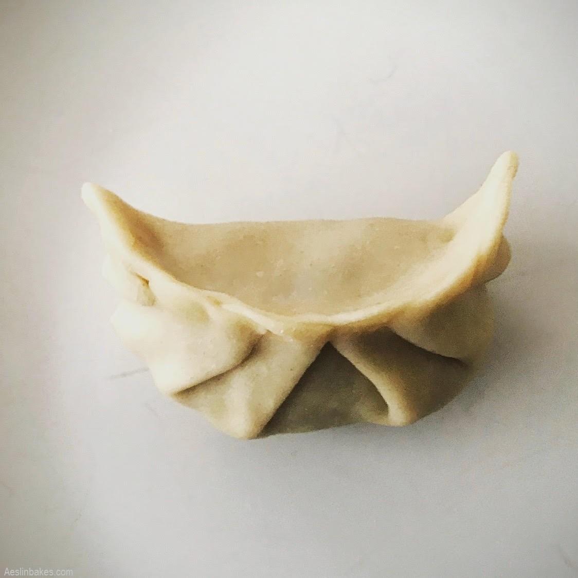 folding potstickers