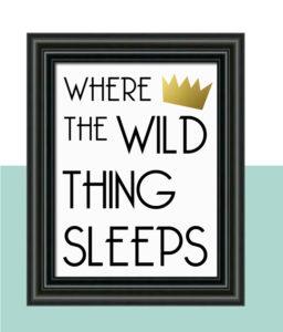 """Where the Wild Thing Sleeps"" Nursery Decor"