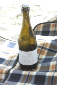 When you fly out to Whitehaven beach from Hamilton Island, the champagne is included!