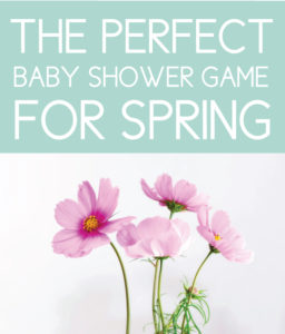 The Perfect Spring Baby Shower Game